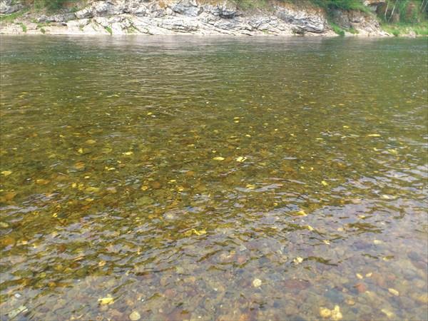Вот такая прозрачная водичка в реке Кия