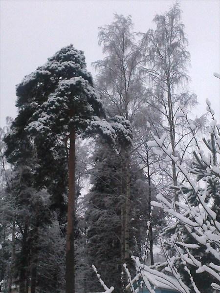 Снежная одежда