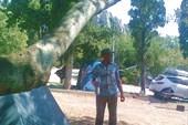 Кемпинг в Крыму возле Симеиза