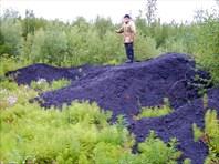 Угольные кучи около Епы