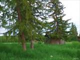 Нежилая деревня Янки