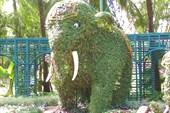Слоненок в  CRAZY ZONE.