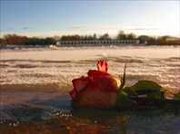 2012.01 Великий Новгород — разное