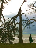 Абхазия. Январь 2008