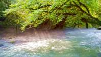 Река Мчишта (Черная)