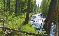 Река Енюк