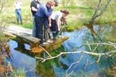 Мшанские источники. Колодец глубиной 7м с прозрачной водой.