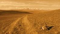 Просторы Монголии-Монголия