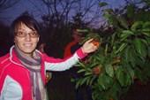 Офигевшие сибиряки в мандариновом саду Гарика