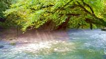 Река Мчишта (Чёрная)