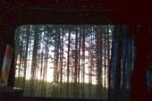 Рассвет. Вид из спальни.