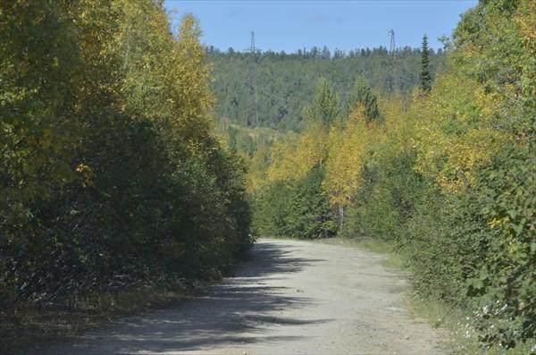 Дорога на Таёжный