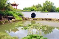 03 Hamilton Gardens