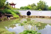 Создание китайского сада это целое искусство