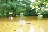 Мелководье на реке