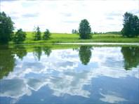 Мир чистой воды.