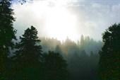 Утренний туман в Софийском ущелье