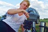 Таганрогский виноград.