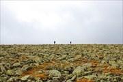 Курумчик по пути к перевалу Перевальному