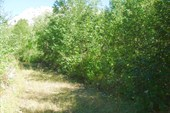 Дорога у подножия горы за рекой Витница.Автор-надежда-географ