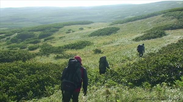 Отважные экспедиционеры на пути к вулкану