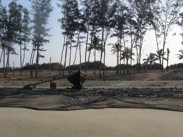 Пляж Беталбатим.ГОА 2009г(ЯНВАРЬ)