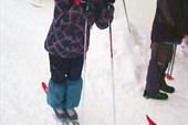 затем проверили лыжи