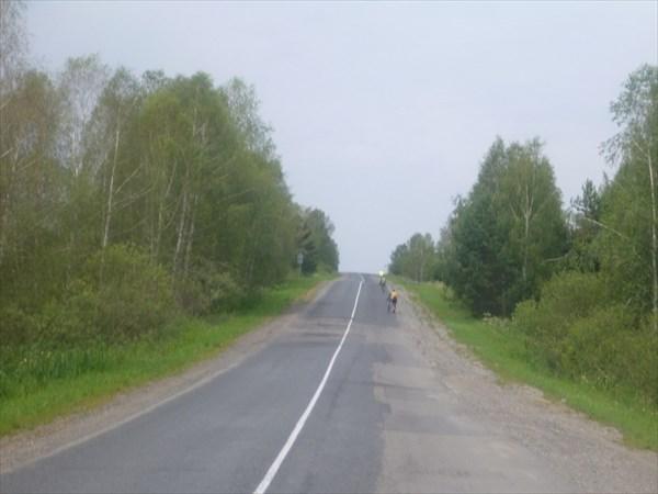 Бирюксинский перевал