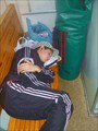 спать пора уснул бычок лег в кроватку на бочок