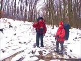 Зимние лужи