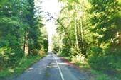 Старый участок трассы `Скандинавия`