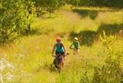 По полевой дороге к урочищу Заливному