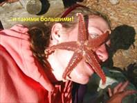 """Презентация """"Рыбалка и Морепродукты"""""""