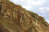 Вдоль `границы` Алтайский край - Республика Алтай