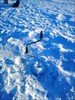 на фото: К весне лёд нарастёт, наверное, ещё больше.