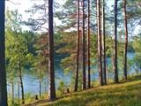 Воробьево озеро