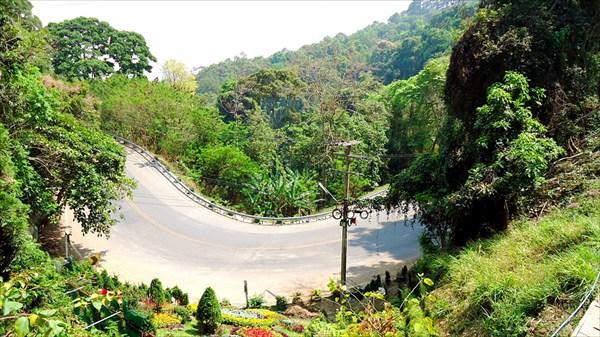 Дорога в гору Дой Сутхеп