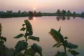 Первый закат в Тайланде