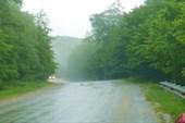 Асфальтовая мокрая дорога