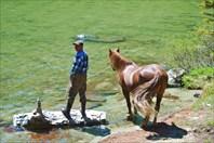 Дима привел своего коня на водопой