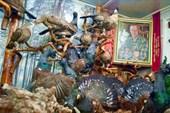 Русскинский музей природы и человека