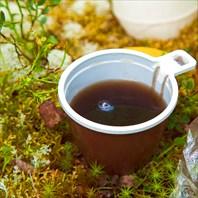 Шарью-Профиль-Чай-цвета-кофе-
