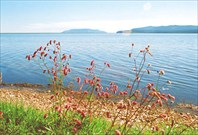 Озеро Соленое (Большое, Большой Шантар)