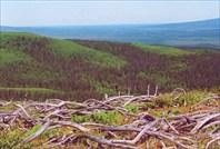 Вид с перевала в сторону озера Соленого