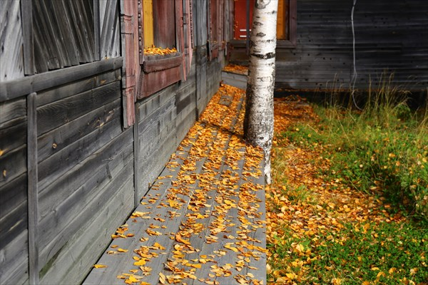 5.Осень