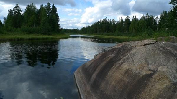 Большая каменная слепая черепаха в реке Айотойоки