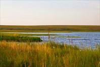 Ручей, впадающий в озеро Нгосавэйто