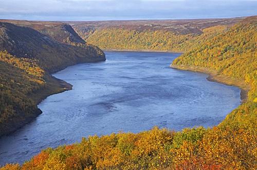 река Поной осенью