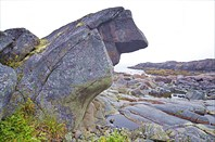 Каменный ежик