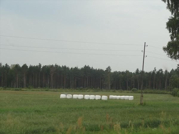 Латвия сельская.